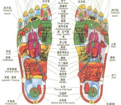 Geleneksel Çin Ayak Refleksolojisi / Traditional Chinese Foot Reflexology